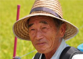 料理人が選ぶ米 紀宝米 生産者